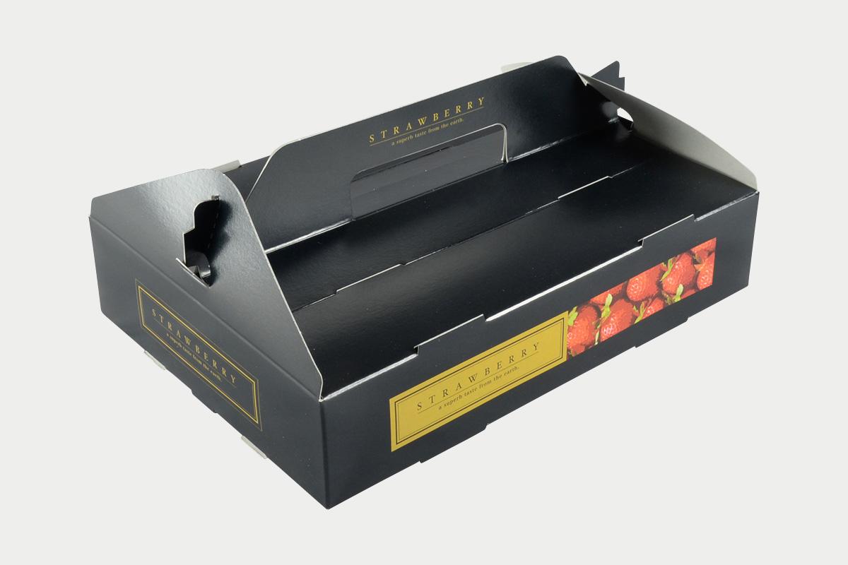 PS手提箱  イチゴ  2P  シックブラック